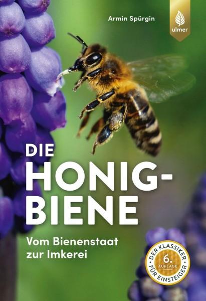 Die Honigbiene - Armin Spürgin
