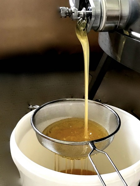 Das Honigsieb für den Imker (Grobsieb)